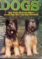 Dogs July 1977