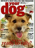 Your dog Jan 2010