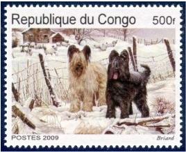 Republic du Congo 2009 ?